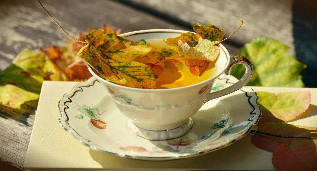 Jak posiluji imunitu v zimě a na podzim. Nejradši mám čaje Oxialis.