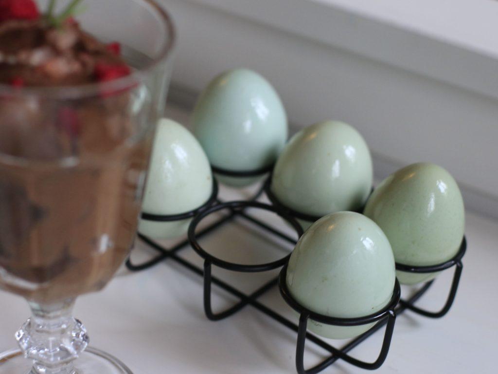 Recept na čokoládovou pěnu s Indiánskými vejci OVUS udělá radost na Valentýna.